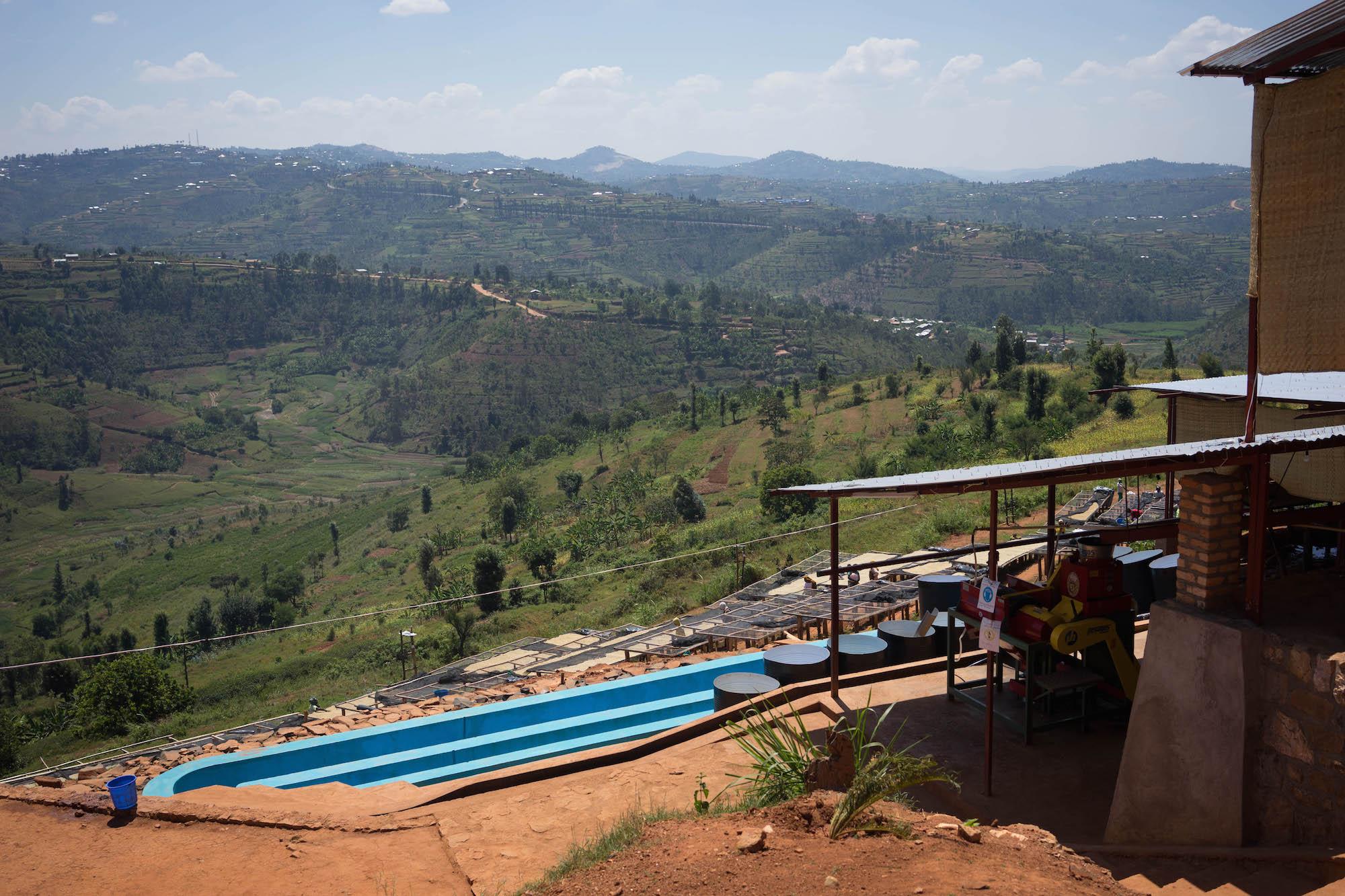Rwanda: Motherland Farmers – Kamiro