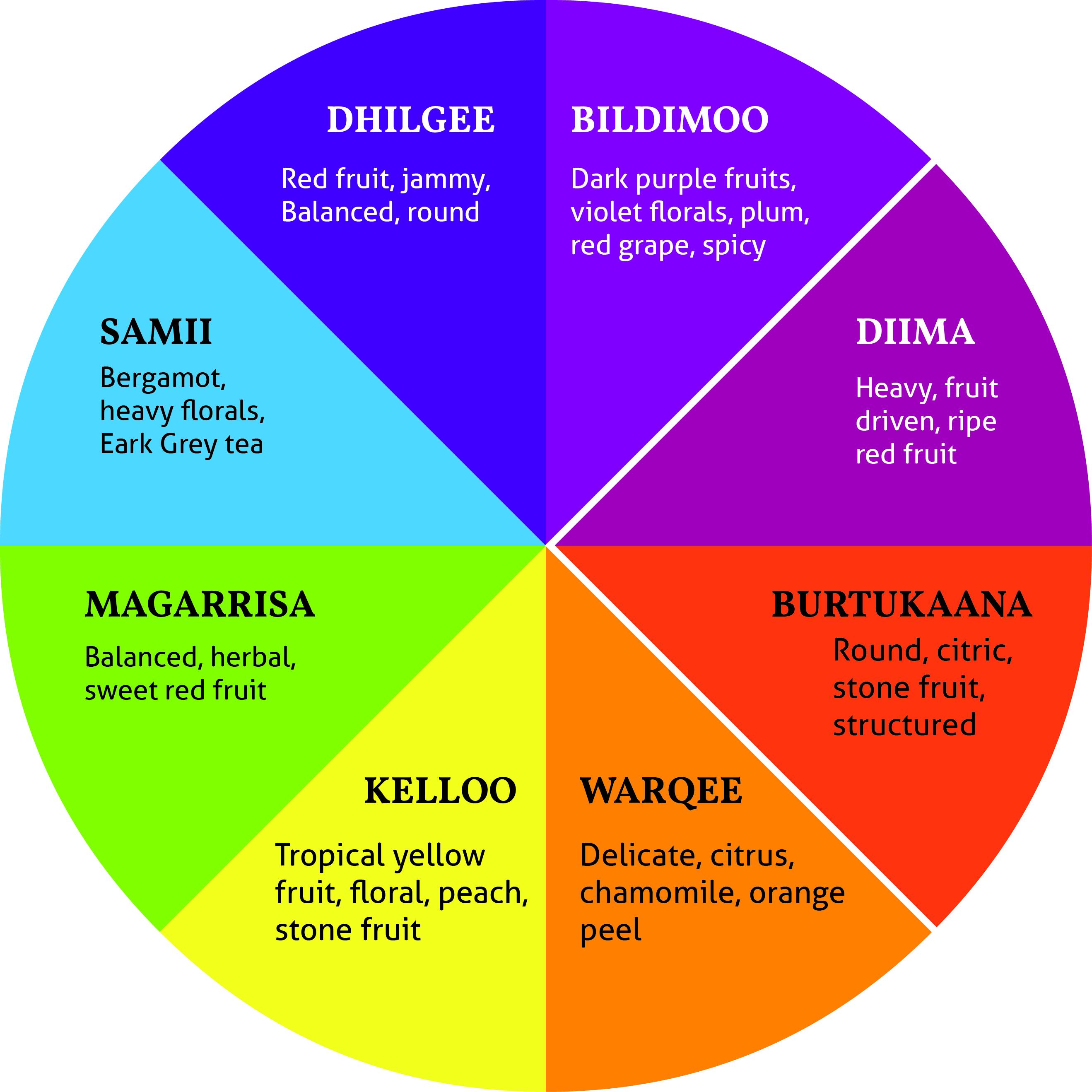 Ethiopia Ecx Colour Wheel Nordic Approach