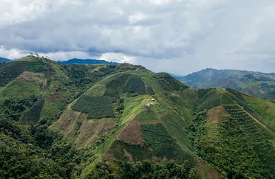 Huila, Colombia, coffee farms